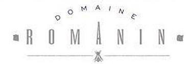 Romanin